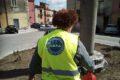 Bojano (CB), l'AMPA adotta l'aiuola di Piazza Pasquino